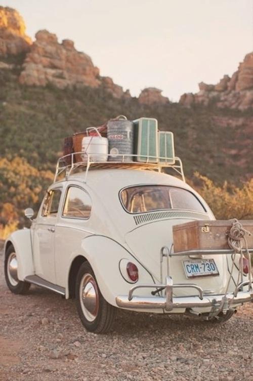 road trip via Freda Salvador